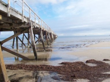 semaphore_jetty